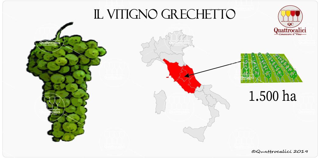 vitigno grechetto