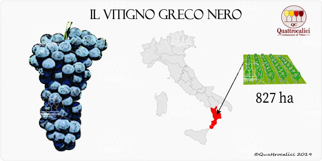 vitigno greco nero