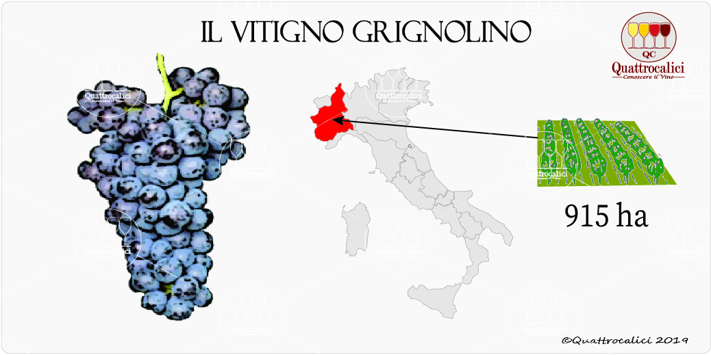 vitigno grignolino