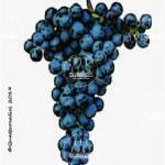 gruaja vitigno