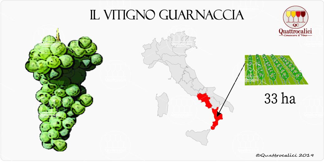 vitigno guarnaccia