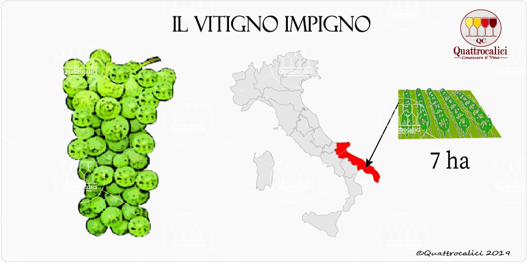 vitigno impigno