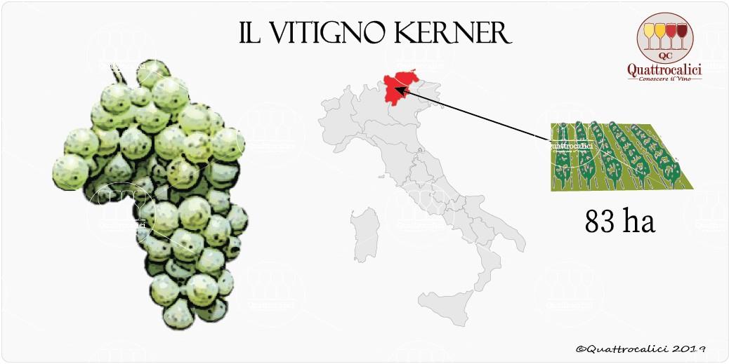 vitigno kerner