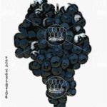 lagrein vitigno