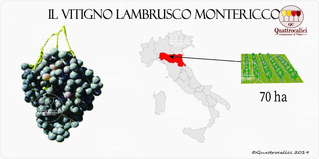 vitigno lambrusco montericco