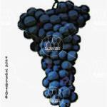 lecinaro vitigno