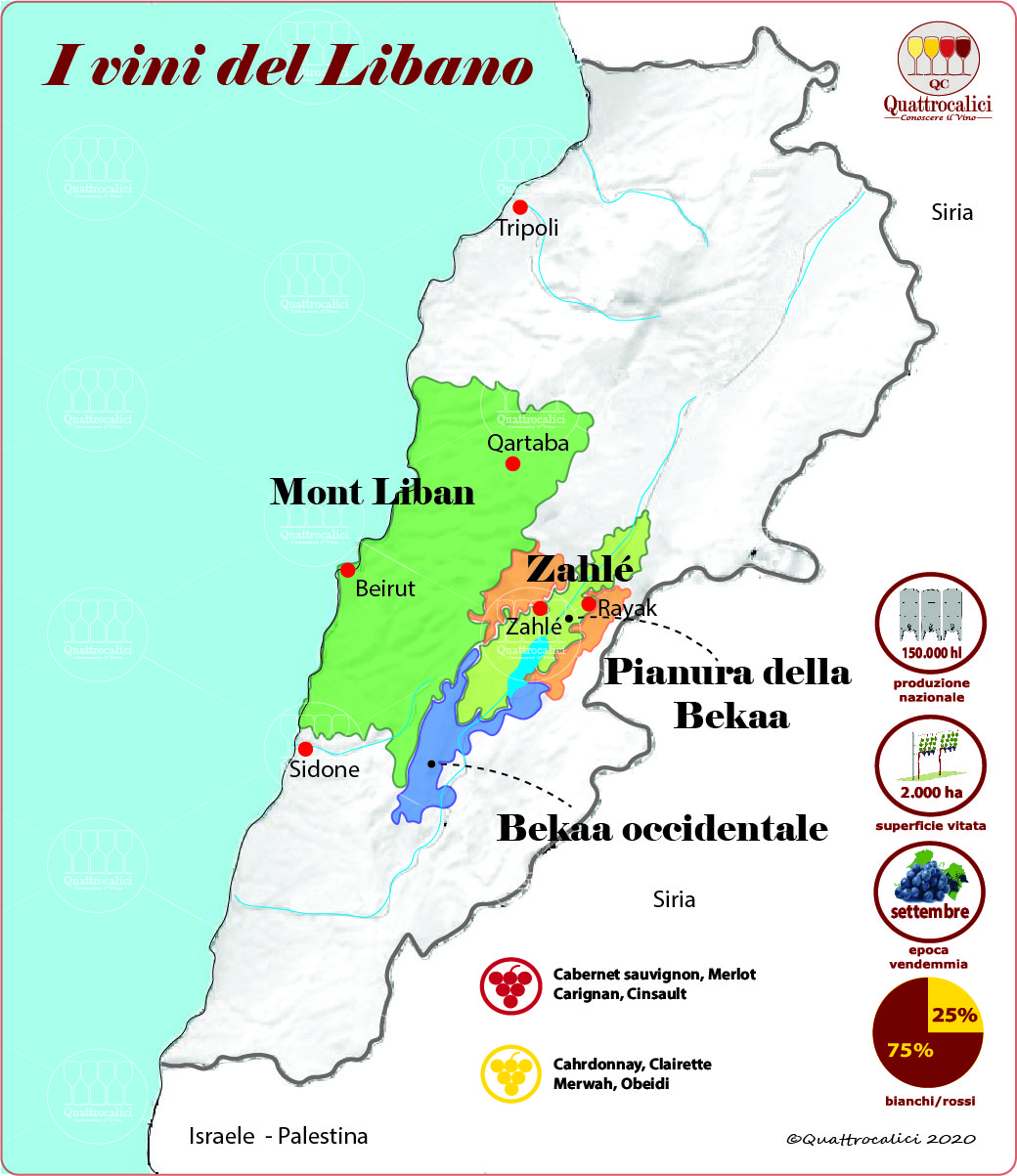 I vini del libano