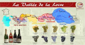 Valle della Loira - I vini