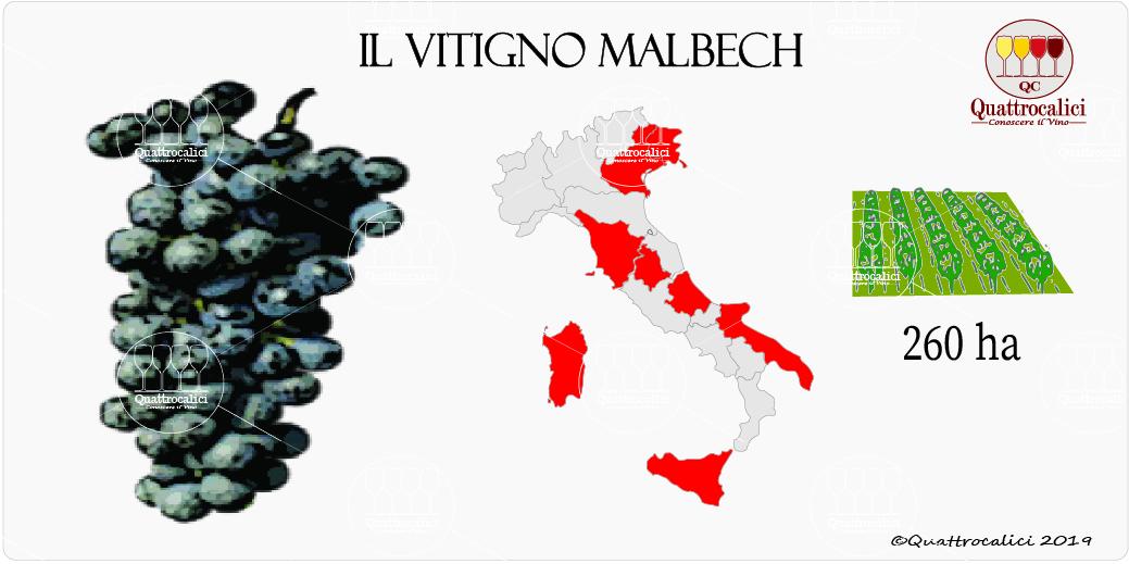 vitigno malbech