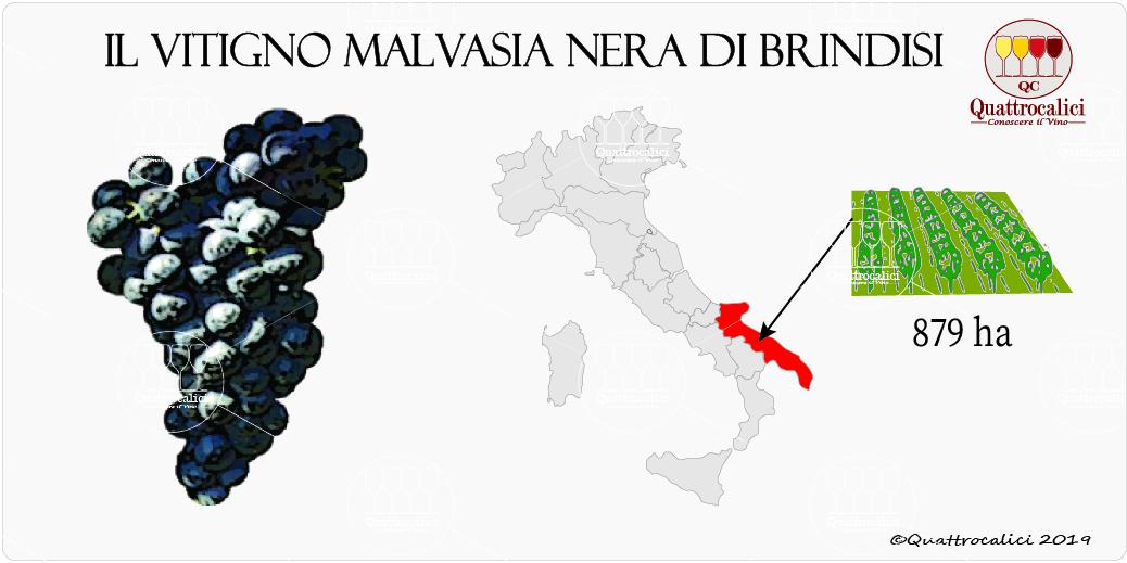 vitigno malvasia nera di brindisi