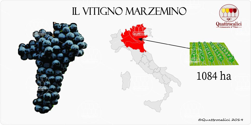 vitigno marzemino