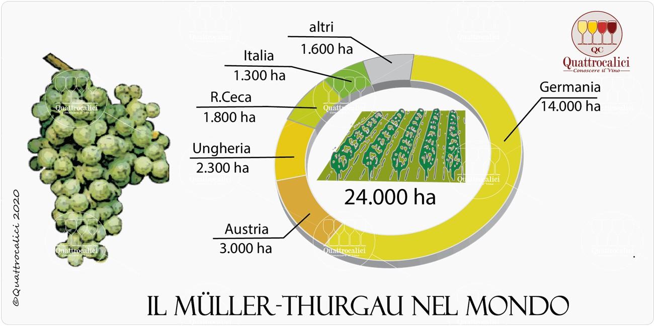 müller thurgau nel mondo