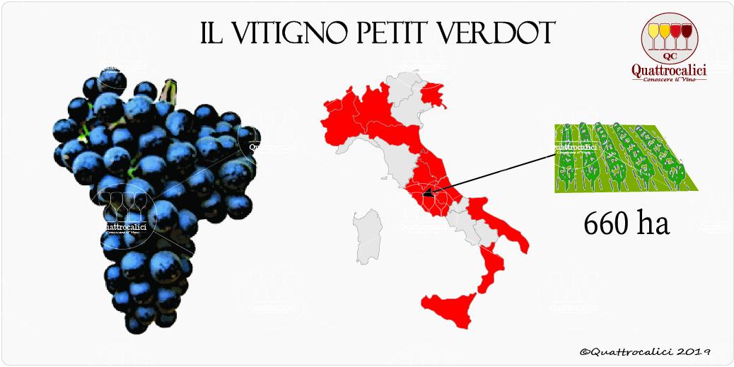 vitigno petit verdot