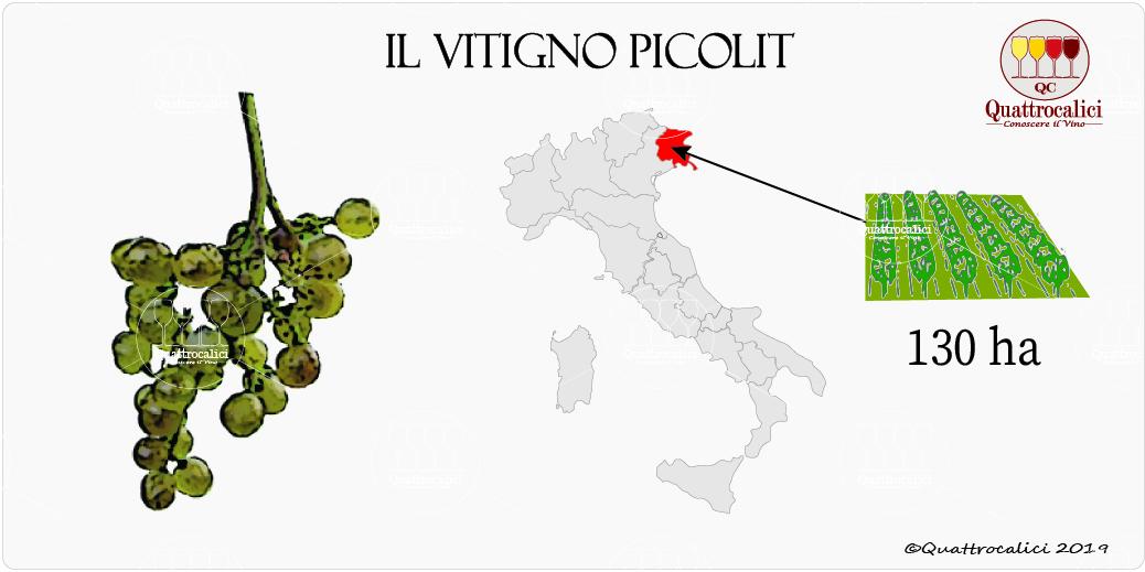 vitigno picolit