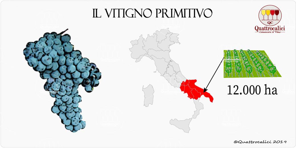 vitigno primitivo