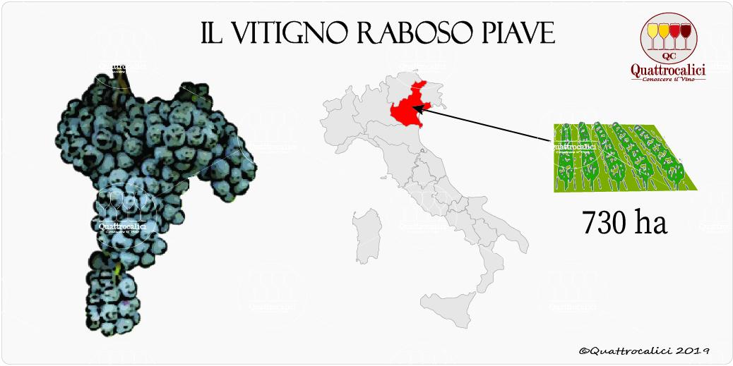 vitigno raboso piave