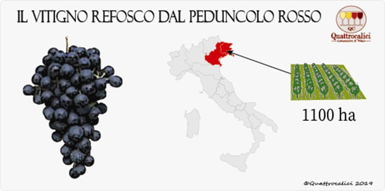 vitigno refosco peduncolo rosso
