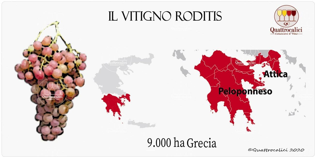 vitigno roditis