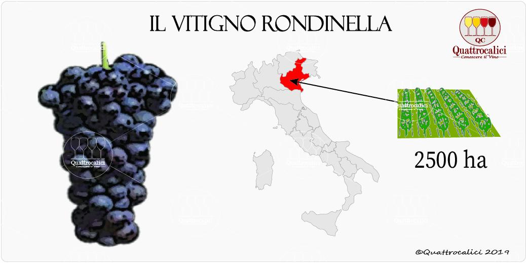 vitigno rondinella