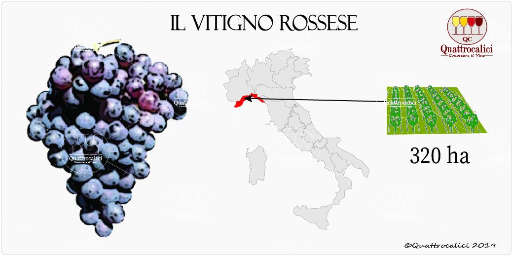 vitigno rossese