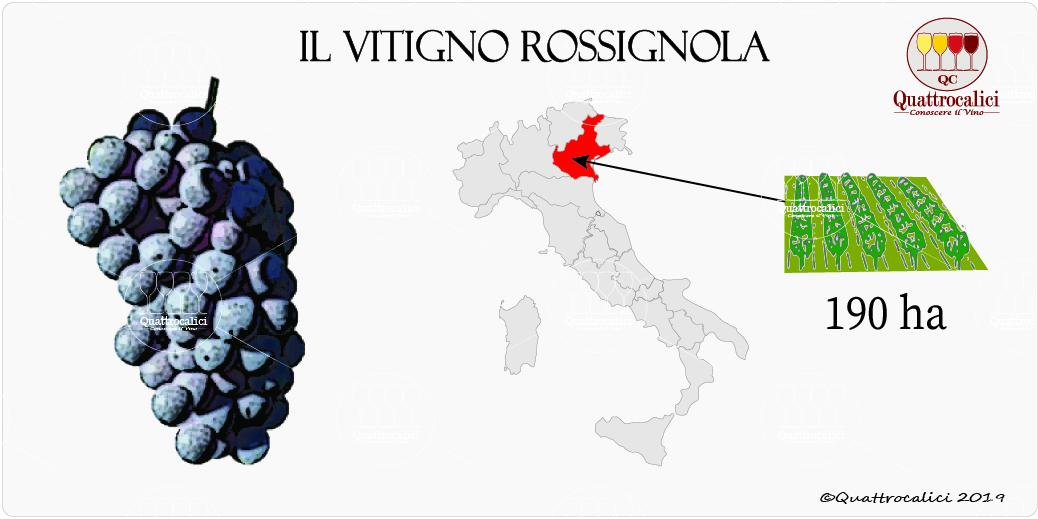 vitigno rossignola