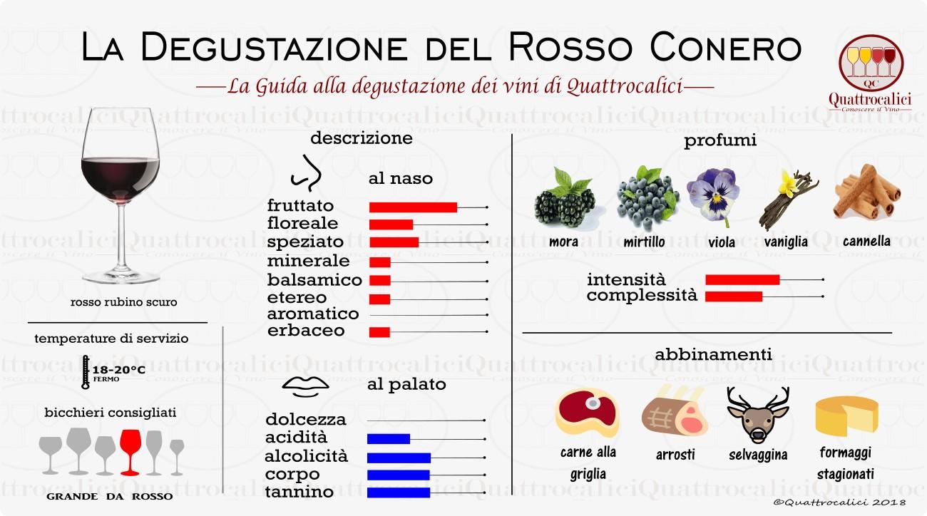 rosso conero degustazione vini