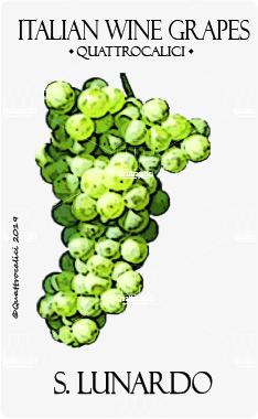 s. lunardo vitigno