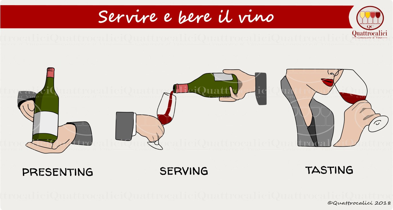 servire-bere-vino
