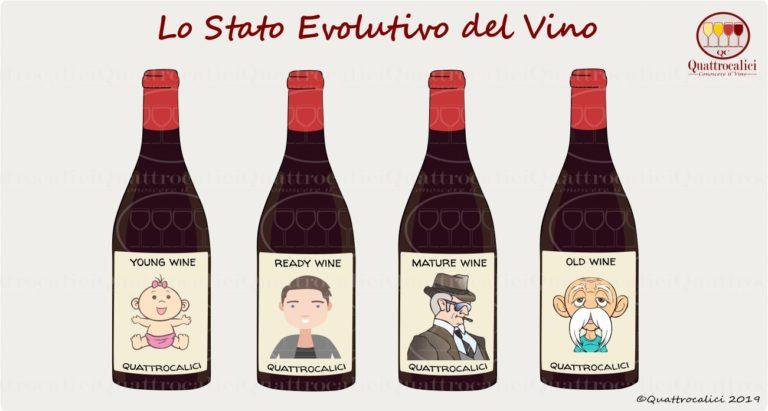 stato evolutivo del vino