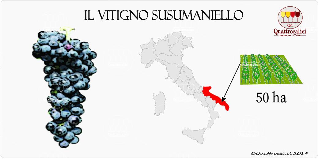 vitigno susumaniello