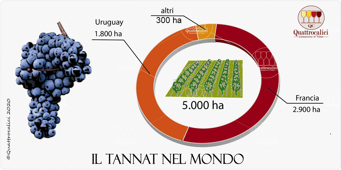 vitigno tannat