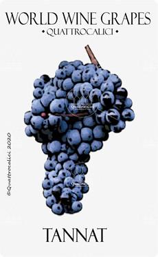 tannat vitigno