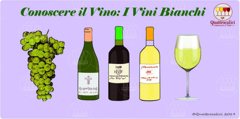conoscere i vini bianchi