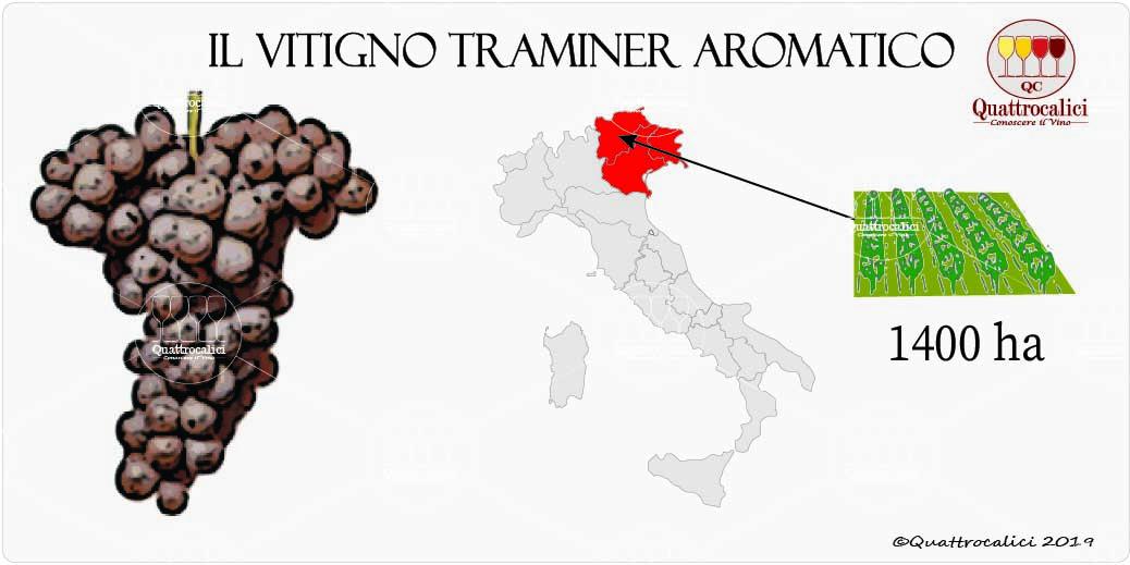 vitigno traminer aromatico