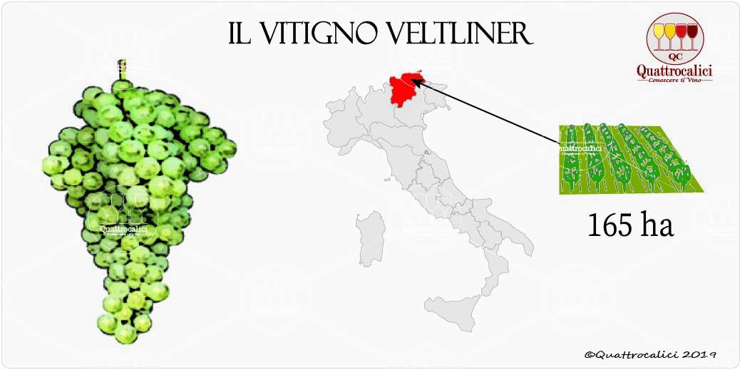 vitigno veltliner