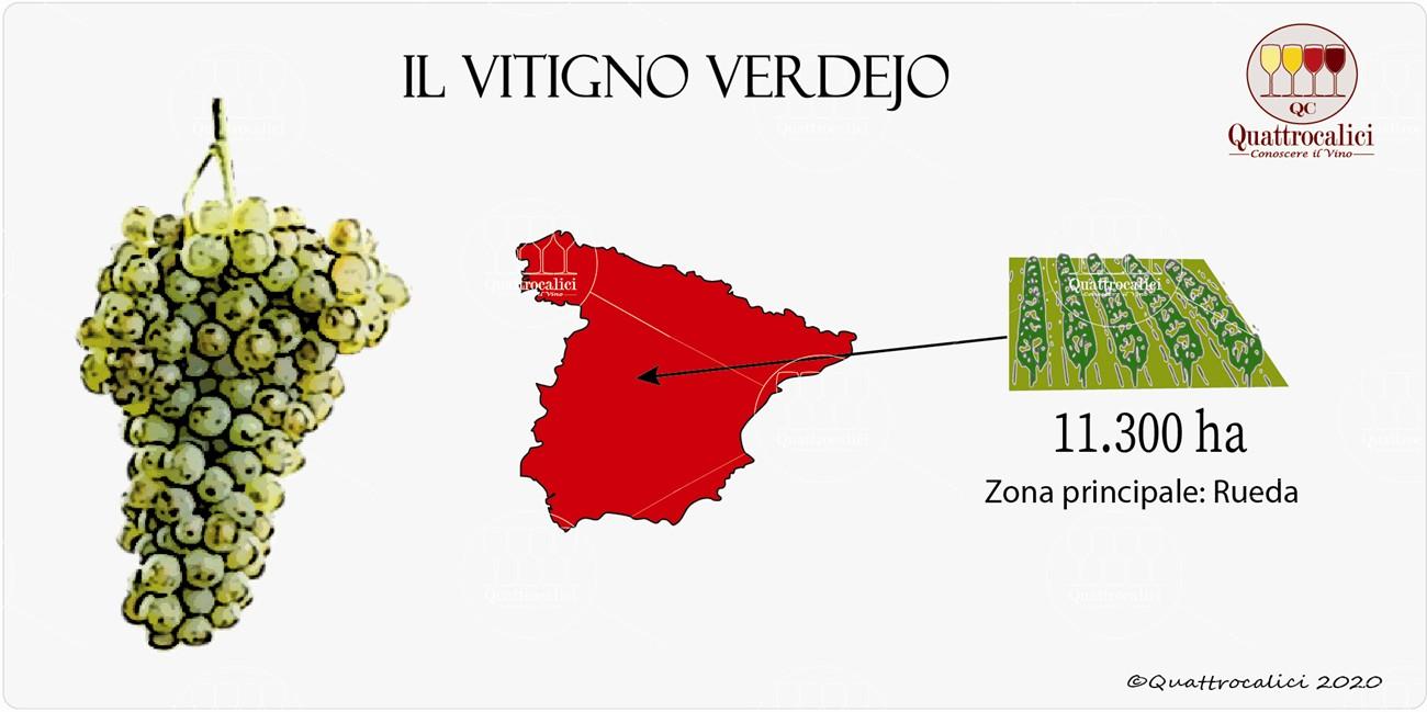 vitigno verdejo