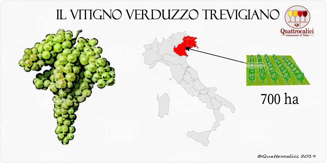 vitigno verduzzo trevigiano