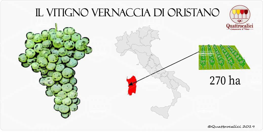 vitigno vernaccia di oristano