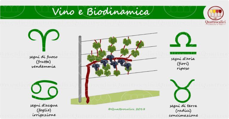 vino-e-biodinamica