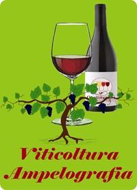 viticoltura e ampelografia - Il corso sul vino di quattrocalici